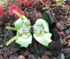 Black Lime Green Flower Polka Dots Hair Bow