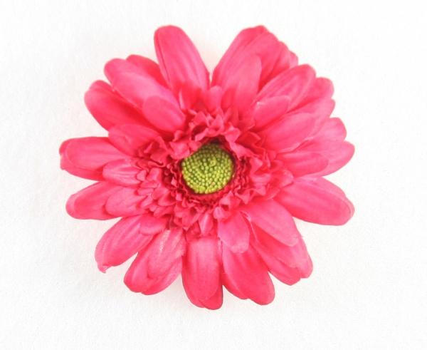Shocking pink silk gerbera daisy hair clip mightylinksfo
