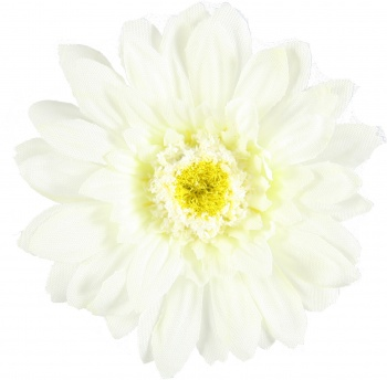 White Daisy Gerbera Flower Hair Clip