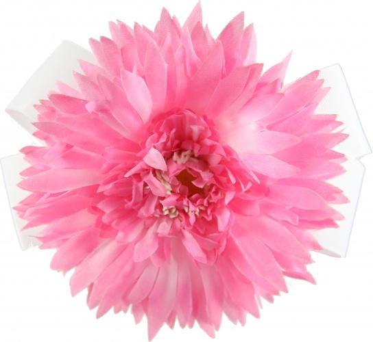 White bow pink spiky daisy flower mightylinksfo