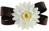 Chocolate Brown with White Daisy Flower Bow