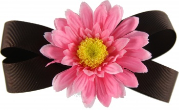 Chocolate Brown Pink Daisy Bow