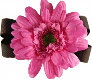 Chocolate Brown with Dark Pink Daisy Bow