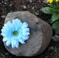 Light Turquoise Silk Gerbera Daisy Clip